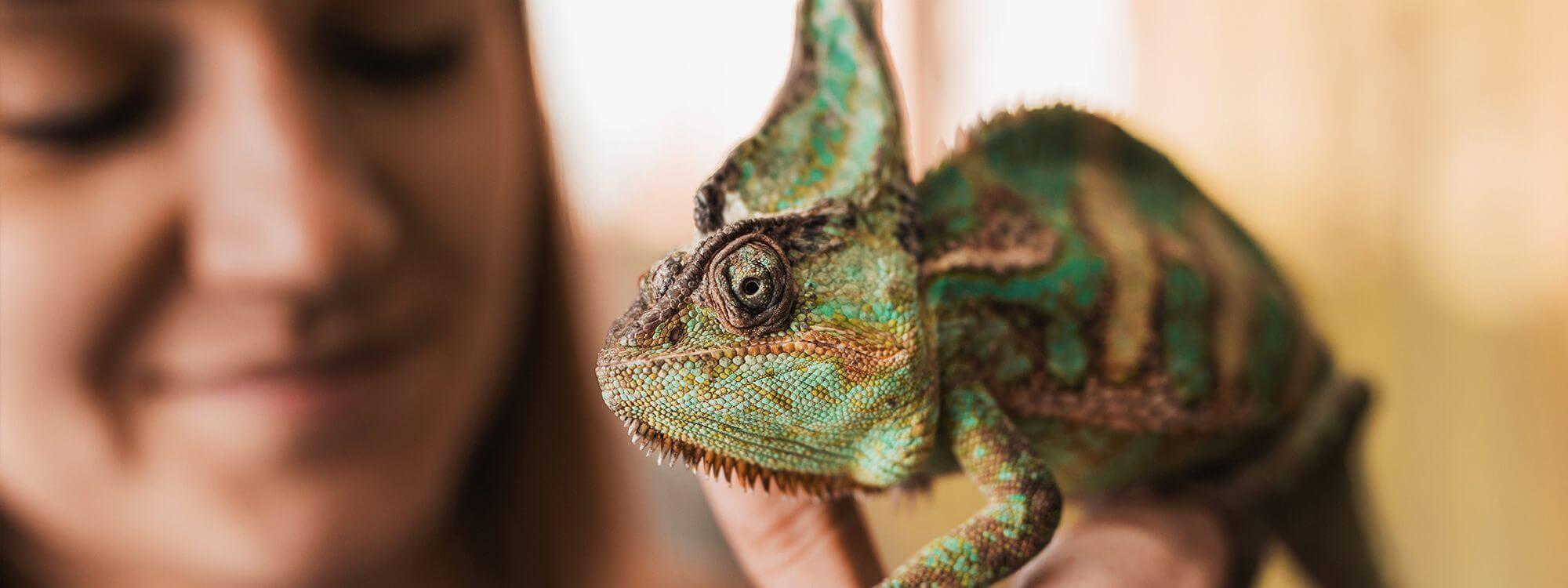 girl holding chameleon