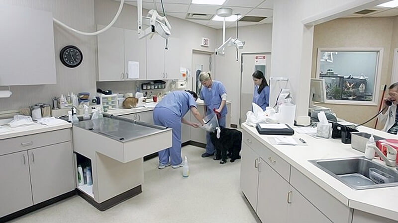 hospital tour