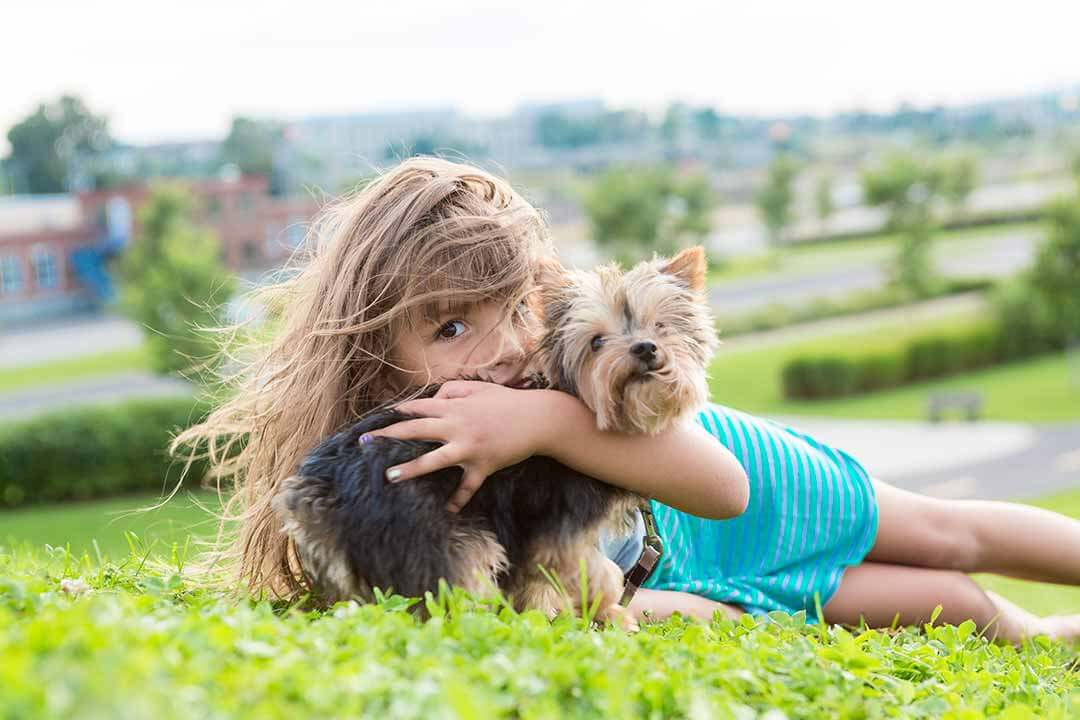 Portrait of girl keeping pretty dog outdoor