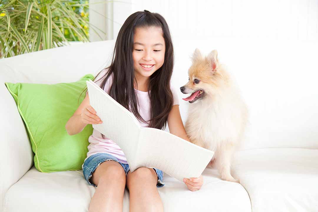 Pomeranian book review and a girl